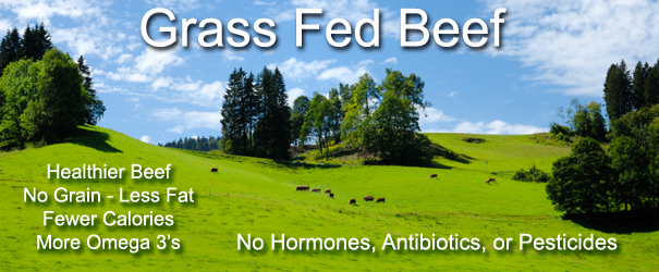 Why Grass Fed Beef?